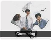 2Fold Productions Consulting
